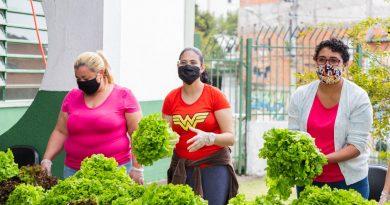Cemeief Darcy Ribeiro sedia ação solidária